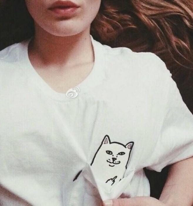 Tshirt Z Kotem Fuck Gdzie Kupic Tshirt Shirt T Z Kot Nadruk Kotek Nadrukiem Kieszenie Fuck Kieszonka Kieszen